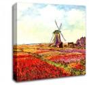 Tablou Canvas 50x50 cm